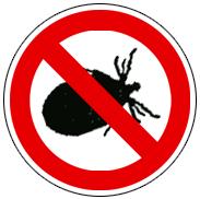 Wir wollen keine Bugs!